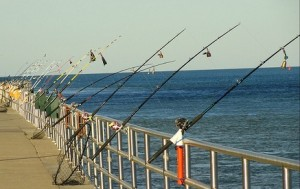 Why You Need a Business Fishfinder
