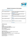 website-clarity-analysis-sample